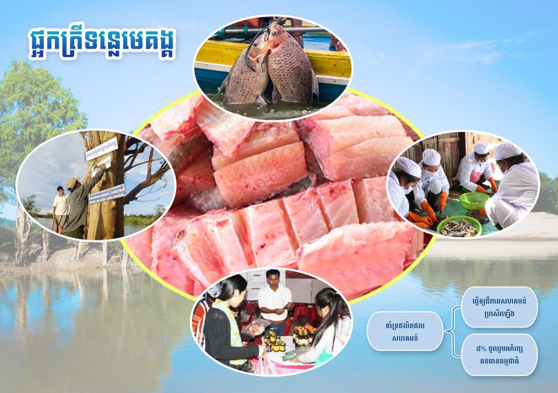 Fish sauce & Fermented fish
